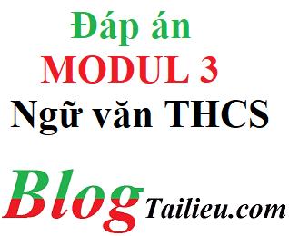 Đáp án mô đun 3 ngữ văn THCS