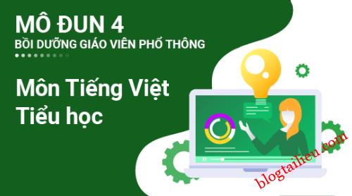 Đáp án trắc nghiệm cuối khóa modul 4 Tiếng Việt – Tiểu học, Gợi ý, hướng dẫn câu hỏi trắc nghiệm cuối khóa module 4 Tiếng Việt – Tiểu học, mô đun 4 môn Tiếng Việt – Tiểu học